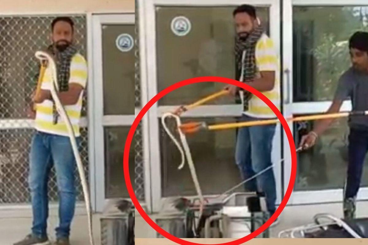 Video : ਏਸੀ 'ਚ ਬੈਠ ਕੇ ਆਰਾਮ ਕਰ ਰਿਹਾ ਸੀ 5 ਫੁੱਟ ਲੰਬਾ ਸੱਪ, ਦੇਖ ਕੇ ਉੱਡੇ ਹੋਸ਼